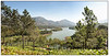 3rd year Pic 292 - Jul 31 2011