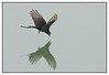 3rd year Pic 311 - Aug 24 2011
