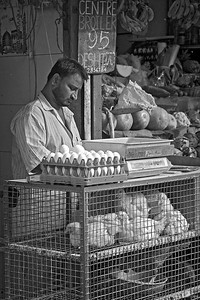 Eggs & chickens 09 July 2010  Shot at Colaba market in South Mumbai.  The colour version is here:   http://hershy.smugmug.com/Photography/Mumbai-my-city/Misc-shots-of-Mumbai/6410100_x8urE#927522116_5vvgA-A-LB   Today is our beloved Dash's birthday, he would have been 17! Guess can't complain because he gave us so much love for 16.6 years...